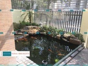 Bể cá Koi